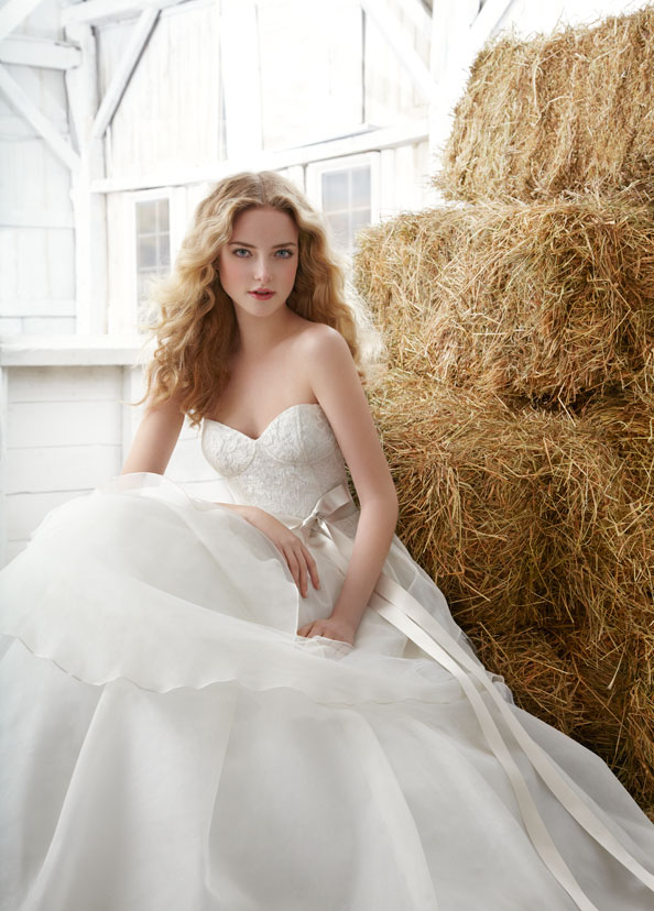 Blush Bridal Gowns, Wedding Dresses Style 1204 by JLM Couture, Inc.